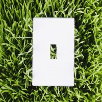 light switchplate in grass