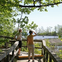 Hiking at Rattray Marsh Conservation Area