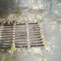 Low Impact Development Pollution Prevention sewer grate