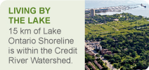 Living by the Lake Banner