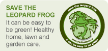 Save the Leopard Frog