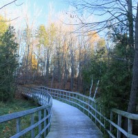 Island Lake Conservation Area Boardwalk