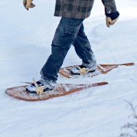Second Sixties Outdoor Club Seniors Fifty Plus Snowshoeing