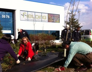 Fall 2011 Meadow Planting Event