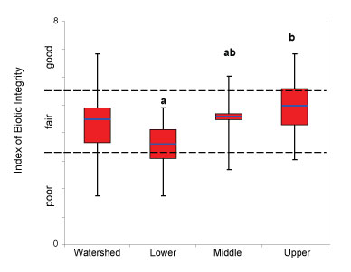 Range of riparian IBI values at the watershed scale and among the 3 physiographic zones. Box-plots show median (blue line), 25th and 75th percentile (red box) and range (black lines) of IBI values. Physiographic zones with different letters have statistically significant differences in their average IBI value (p<0.10).
