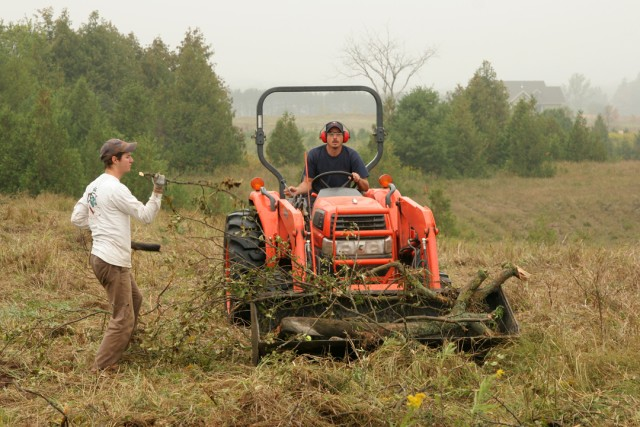 Brush being loaded into the tractor and piled at the edges of the site.