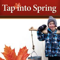 tap into spring