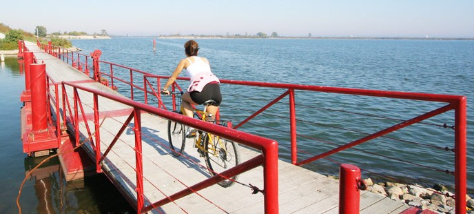 July 29 Twitter Party - Woman Riding bike over bridge