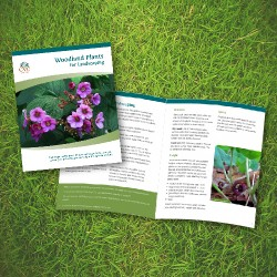 CVC's Woodland Plants for Landscaping Booklet