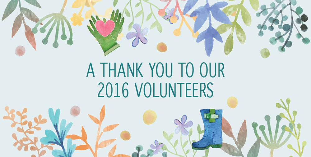 Thank you to our CVC Volunteers in 2016