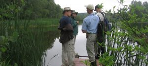 Group of ecologists standing on dock by wetland