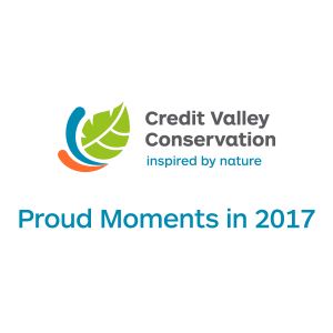 Proud Moments in 2017