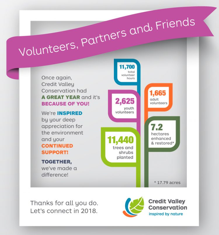 Volunteer infographic and stats