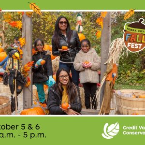 Food and Fun in the Forest at Terra Cotta's Fall Fest