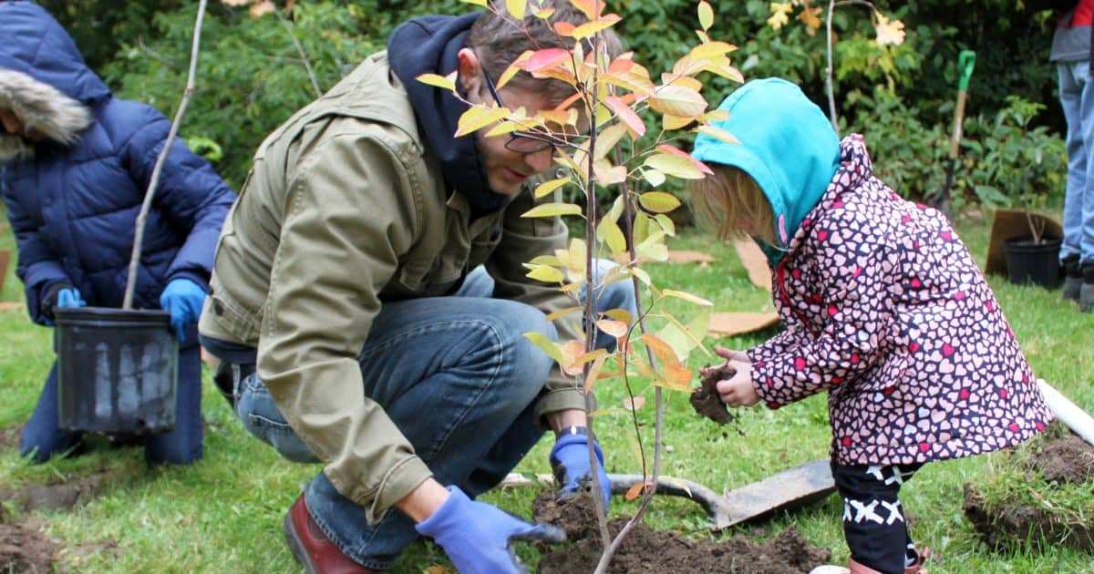 Adult and child planting a tree together
