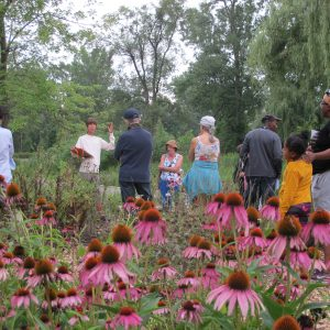 Workshops for Landowners Looking to Make a Difference