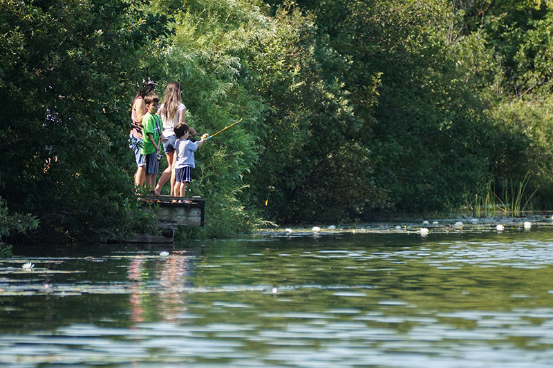 A family of two adults and two children stand on a fishing pier between trees, fishing on the lake.