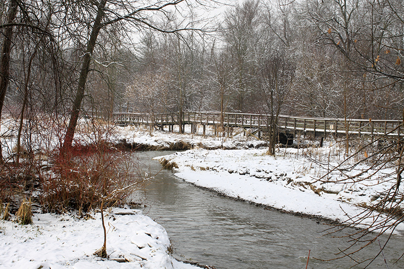 A view of the marsh in winter with a bridge on the opposite side amongst the trees.
