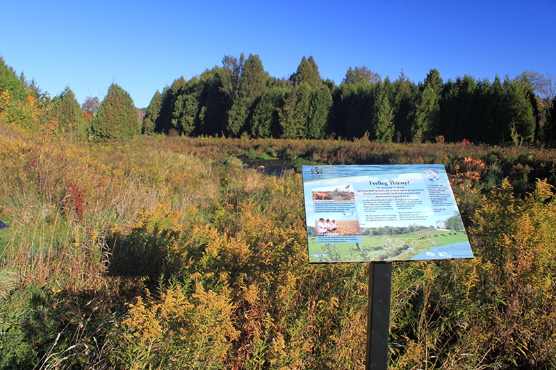 An interpretive sign on a pedestal in an open area of land with trees in the background.