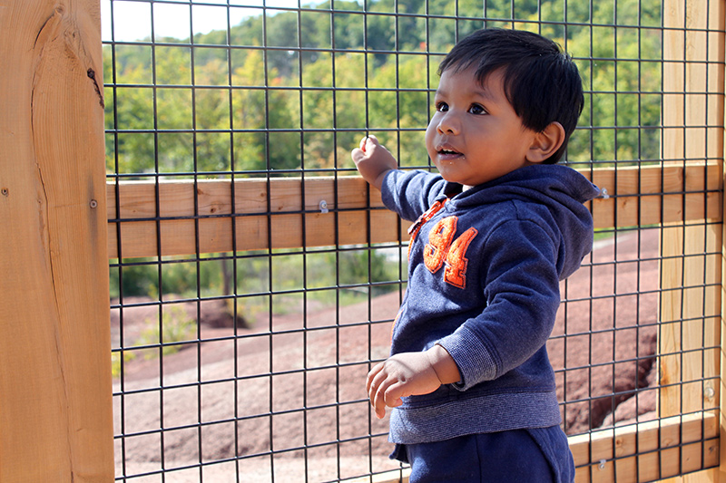 A toddler stands at a fenced lookout over the Badlands.
