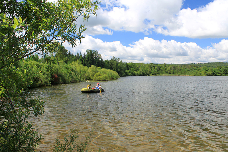 An adult and child in a rubber boat, paddling close to shore on the water, surrounded by bushes and trees.