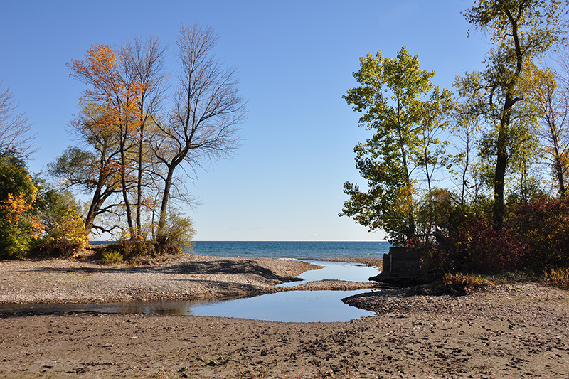 An inlet between Lake Ontario and the marsh, with trees on either side of the entrance to Rattray Marsh.