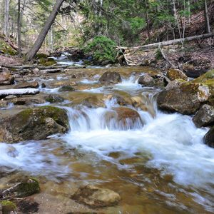 Water flows over rocks in a stream.