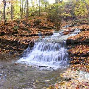 A small waterfall in the woods in fall with fallen leaves all around.