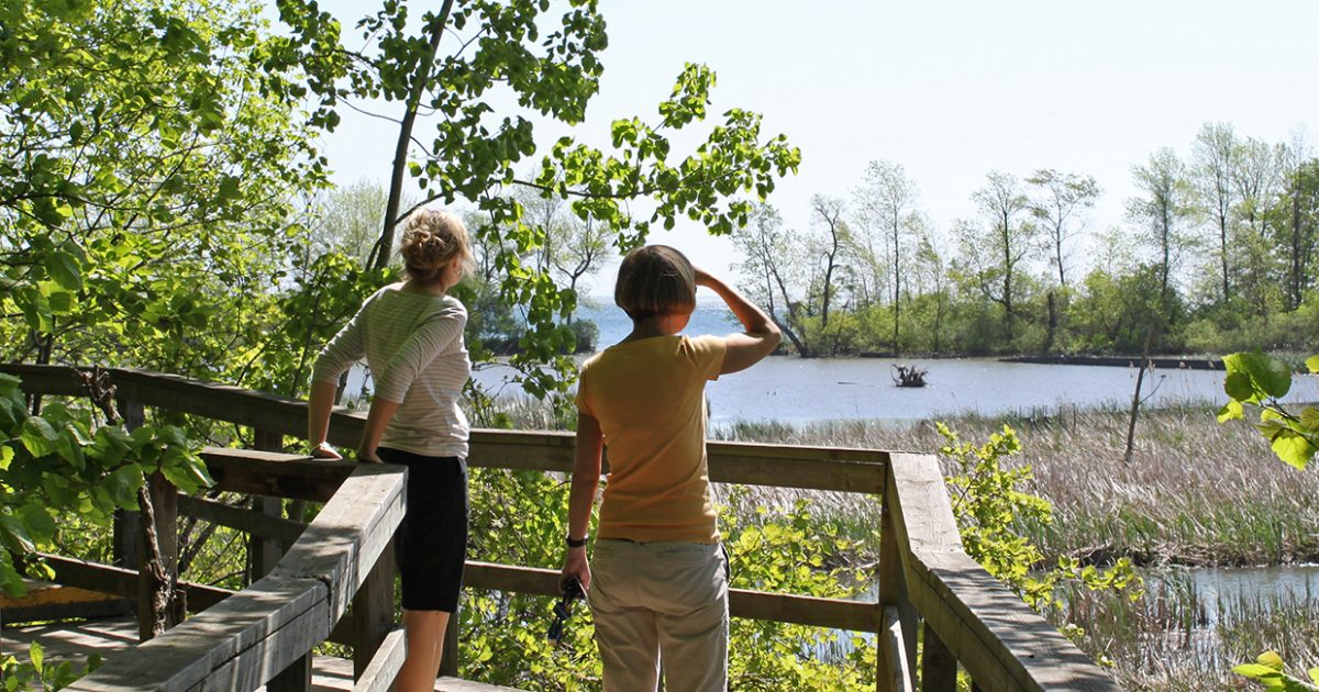 Two park visitors sightseeing at Rattray Marsh