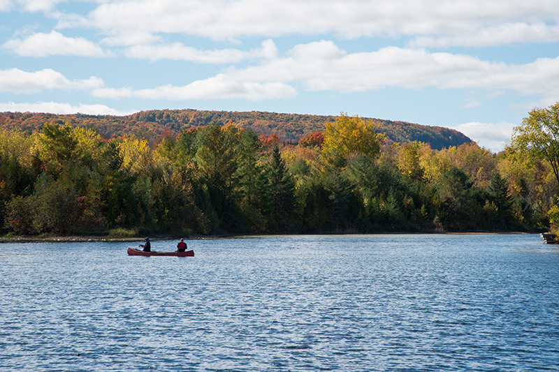 A boat in the far distance, in the middle of the lake, and a view of changing fall colours in the escarpment beyond.