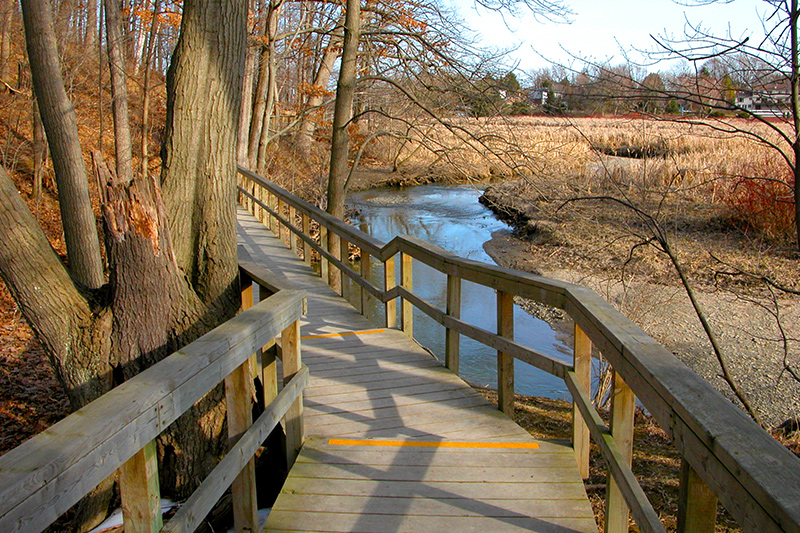 A wooden boardwalk along the edge of the marsh in fall.