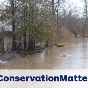 Conservation Matters: Continue the Conversation
