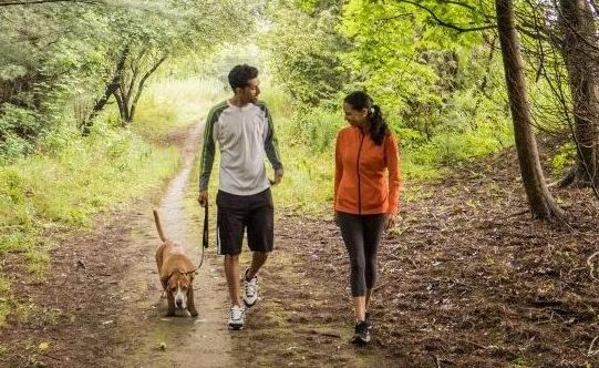 Two people walking a dog along a trail.