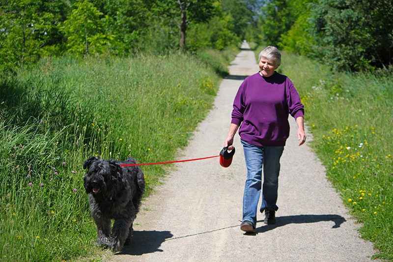 A woman walking her dog along the Elora Cataract Trailway in the summer.