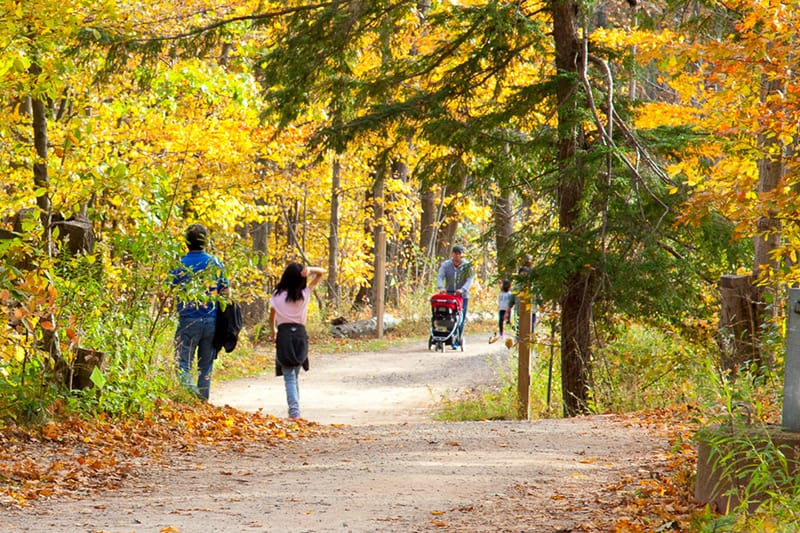 People walking a trail at Terra Cotta Conservation Area.