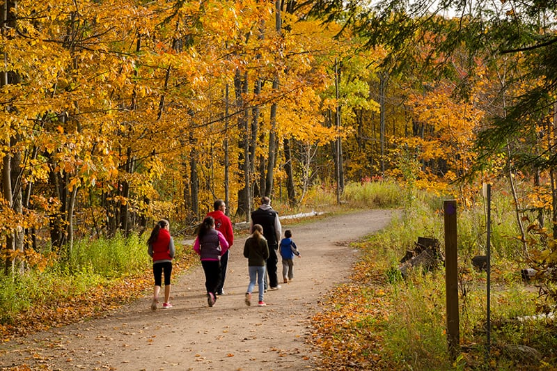 Park visitors walking a trail in the fall at Terra Cotta.