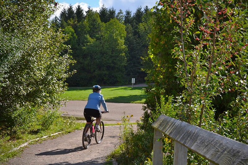 A park visitor riding their bike over a bridge and towards the woods.