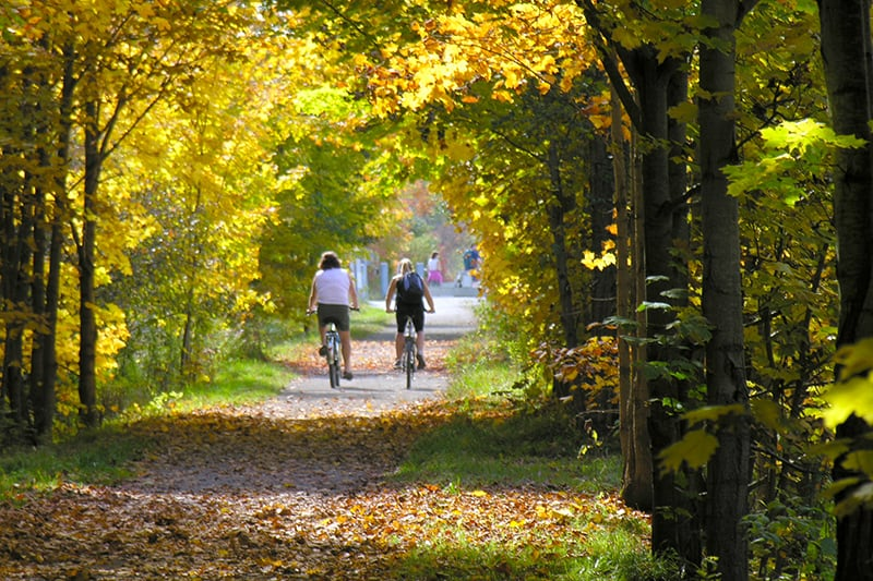 Two cyclists travel the path, surrounded by trees changing colour in the fall.