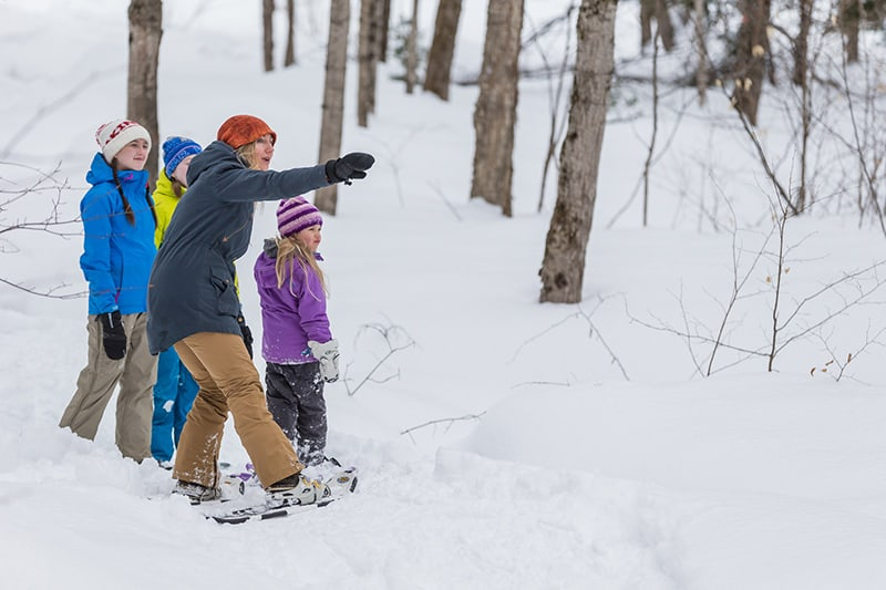 An adult and three young children stop to look at something in the woods while snowshoeing.