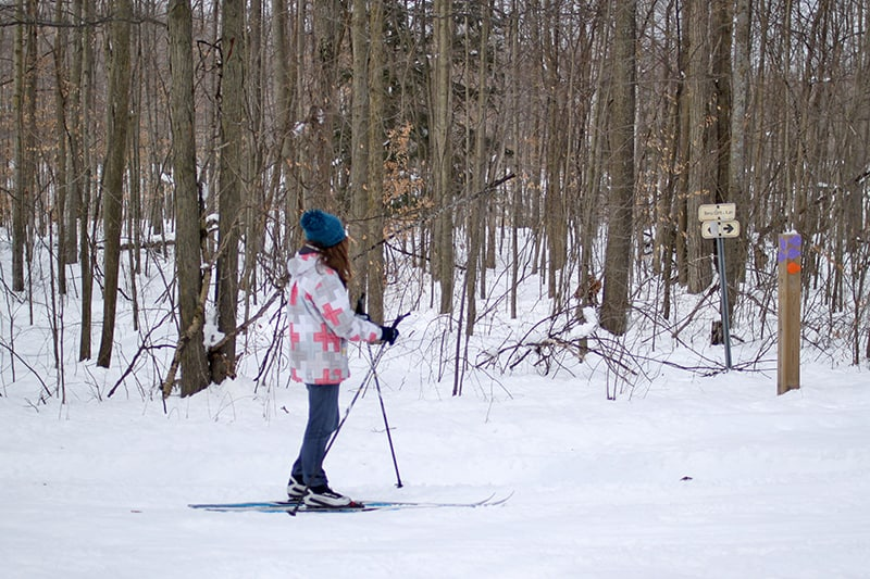 A park visitor cross-country skiing along a stretch of trail in the park.