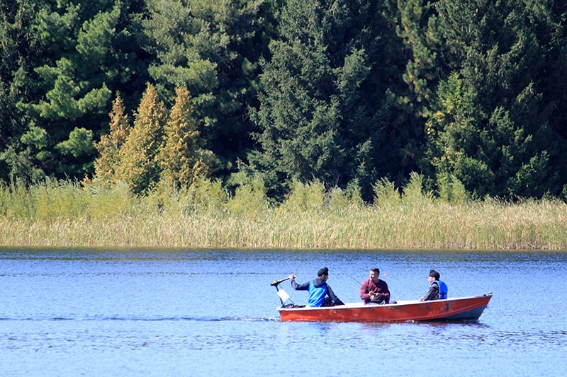 Three men fishing off a motorboat close to the shore.