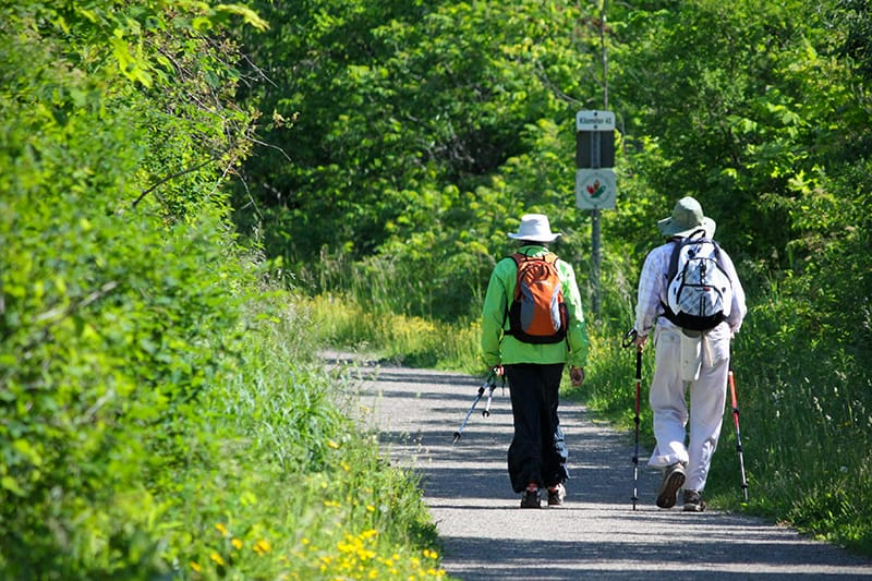 Two people wearing hats and backpacks, and using walking sticks, walking along the trail.