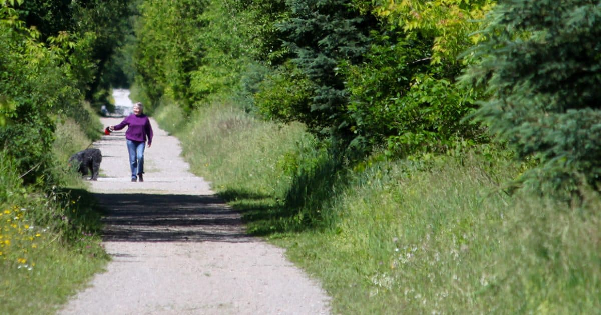 Park visitor walking their dog on Elora Cataract Trailway.