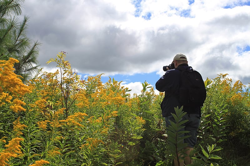 A photographer stands against tall yellow grasses to take a photo on an a cloudy day.