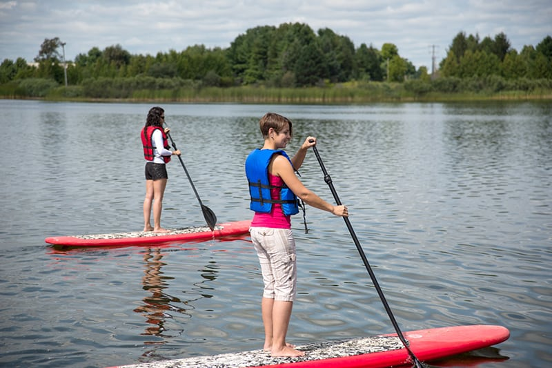 Two people paddleboarding side-by-side on the lake in summer.