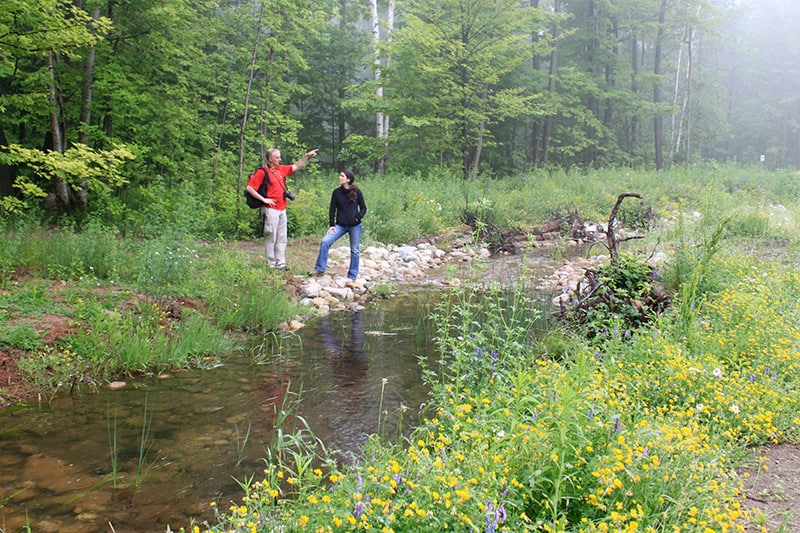 Two people stop to take in the sights along a stream.
