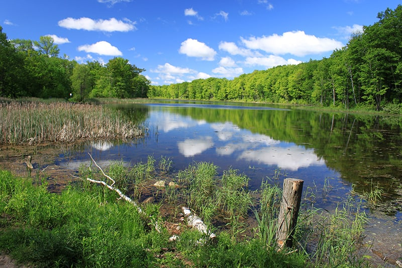 Wolf Lake at Terra Cotta, with still water reflecting the blue sky and white clouds.