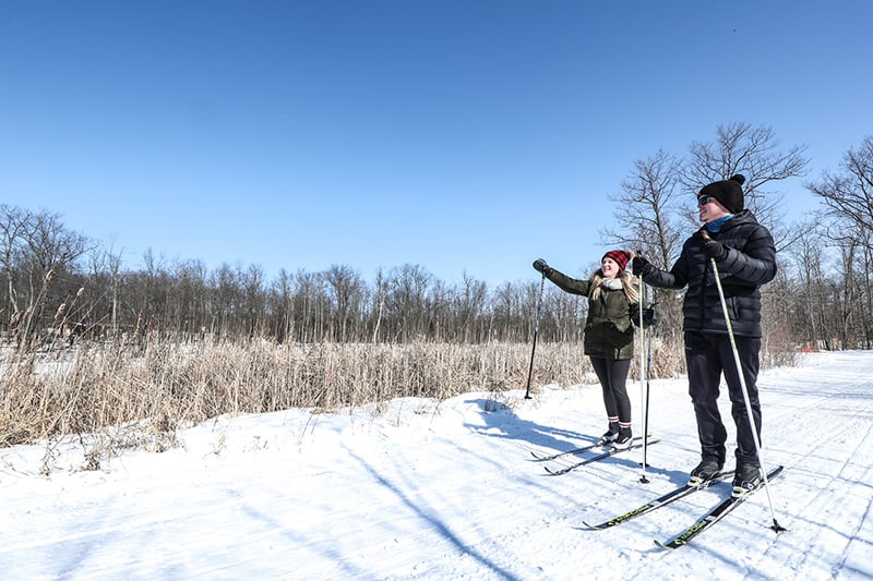 Two park visitors cross-country skiing stop to look at the view in the park