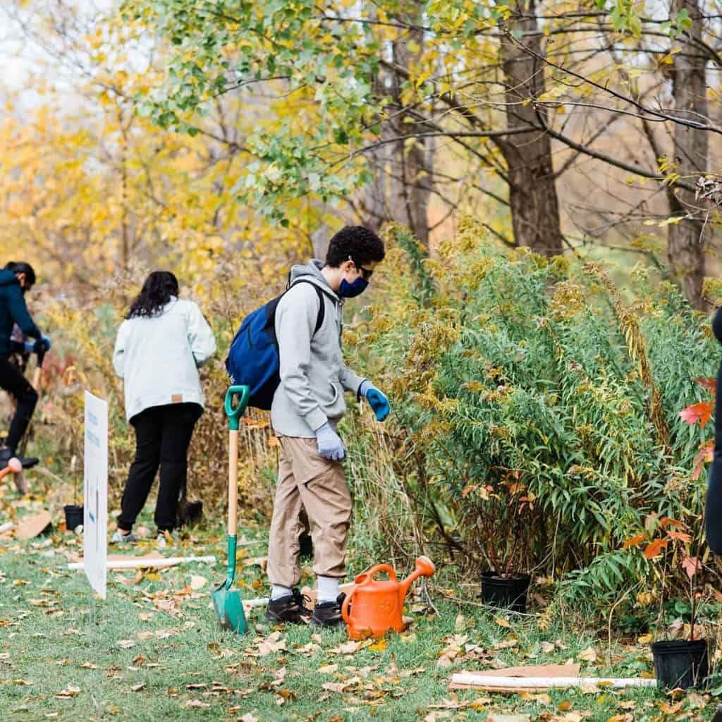 Teens plant trees in a park following COVID-19 protocols