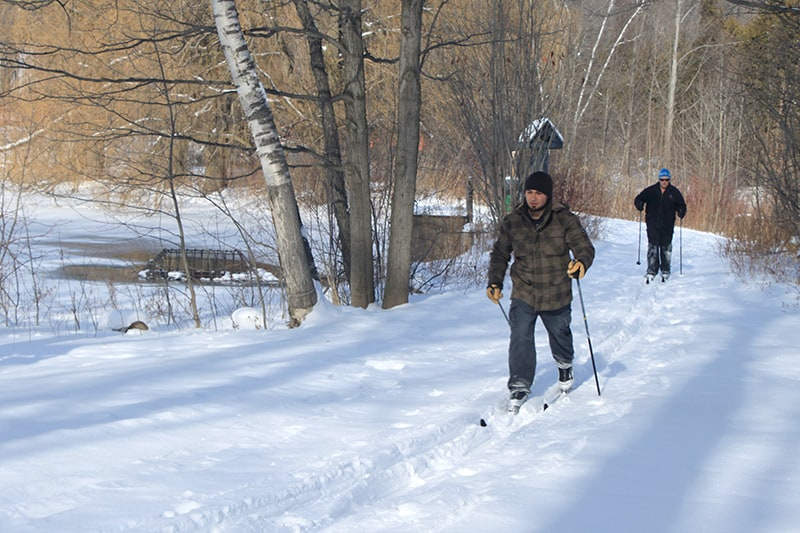 Two friends cross-country ski around a bend in the trail as it passes the lake at Terra Cotta Conservation Area.